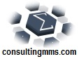 Multi-Language Blog  MMS Consulting